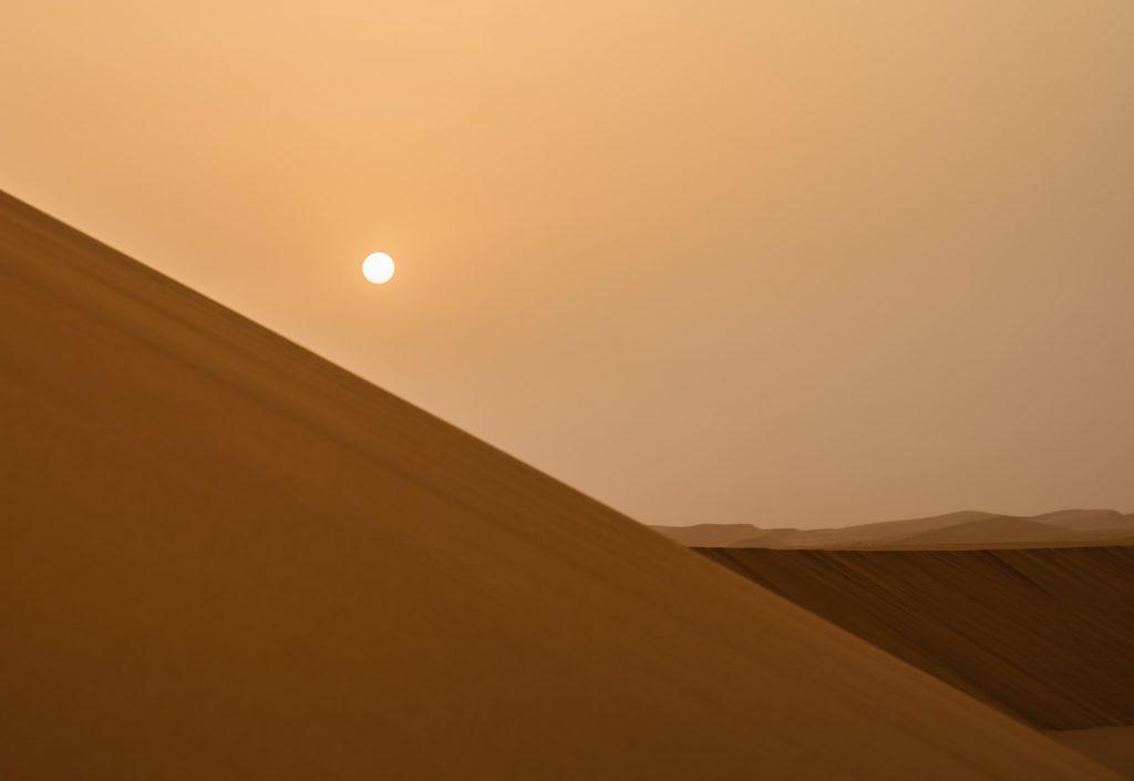 Transforming Nature Conservation in Saudi Arabia