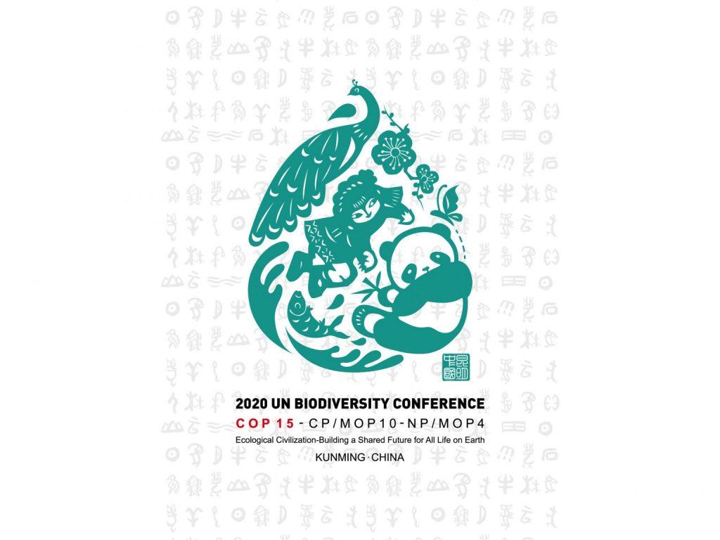 15th Biodiversity COP 2020